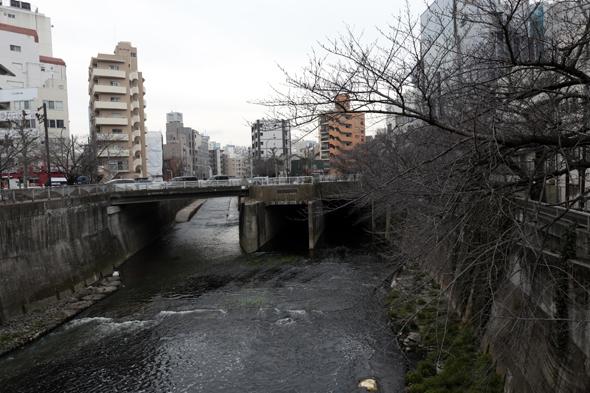 高戸橋のところ